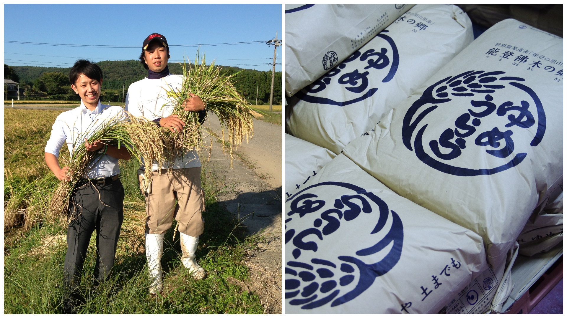 能登の地域食材に寄り添う日本酒「竹葉の食材特化シリーズ」から能登牛・イカ・牡蠣とのマリアージュにこだわった日本酒3本セットが初登場