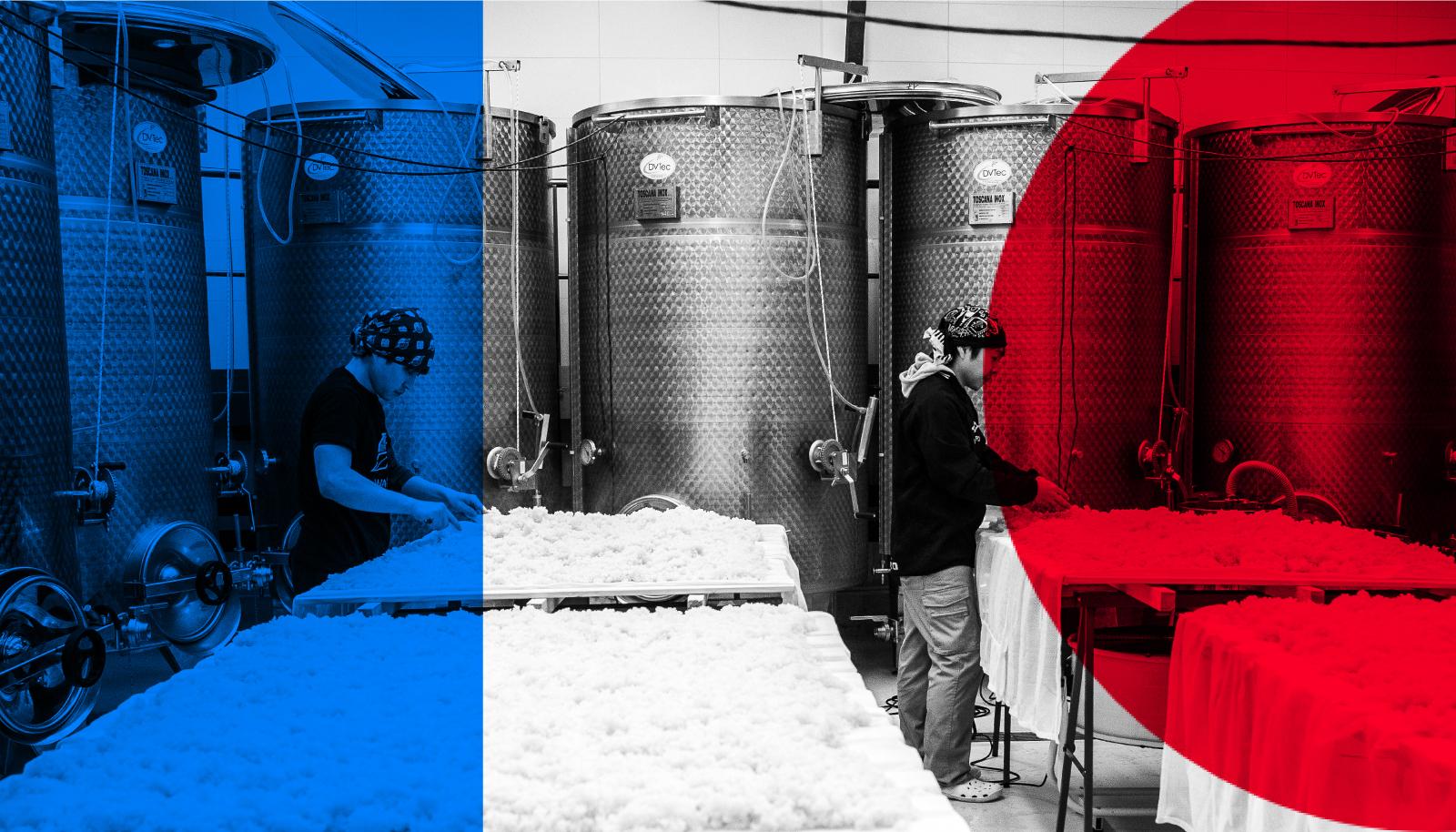 伝統の「干物と清酒セット」なのにアタラシイ!父の日特別「フランス味わう晩酌セット」5月28日発売【日本酒メーカーWAKAZE】
