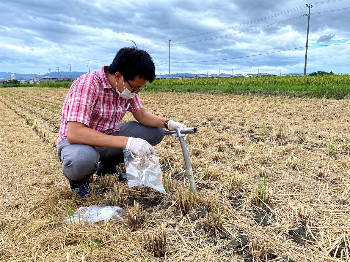 【産学農共同開発】馬有機堆肥で育てたお米から作った日本酒生命科学に基づく土壌改善技術で、おいしく飲んで、持続可能な農業を応援「清酒・勝利馬(しょうりうま)」新発売!